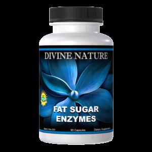 fat sugar enzymes divine nature